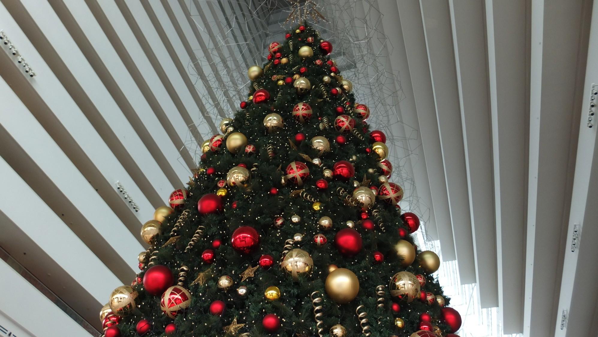 Christbaum Marina Bay Sands Hotel Singapur, Dominik Sommerer, Dominiks Welt